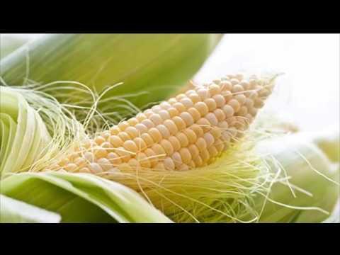 Кукурузные рыльца. Лекарственные травы