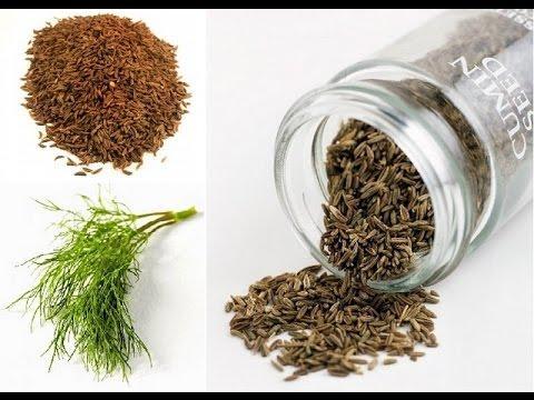 Тмин обыкновенный. Лекарственные травы