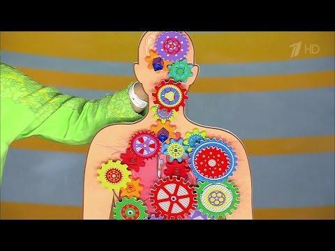Жить здорово! Продукты, повреждающие щитовидную железу.(22.01.2016)