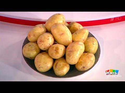 Жить здорово! Реальная еда. Картофель. (15.09.2017)