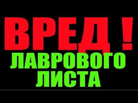 ВРЕД ЛАВРОВОГО ЛИСТА .