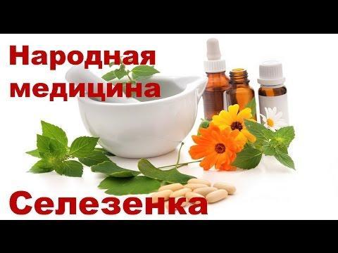 Лечение селезенки народными средствами